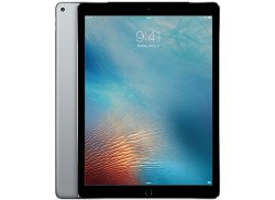 iPad Pro 256GB 12.9 inch Wifi+Cell Space Gray